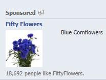 facebook-ad-cornflowers