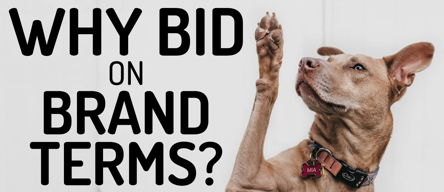 why-bid-on-brand-terms